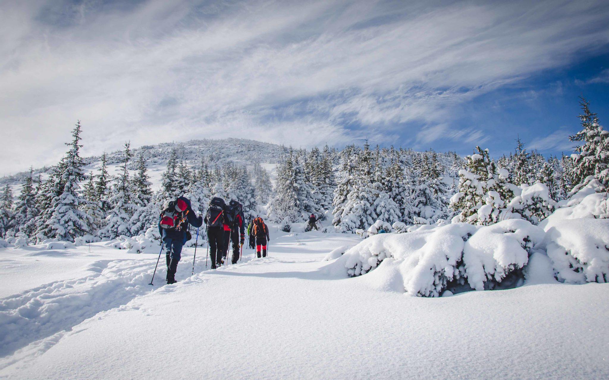 Osoby idące po śniegu do góry