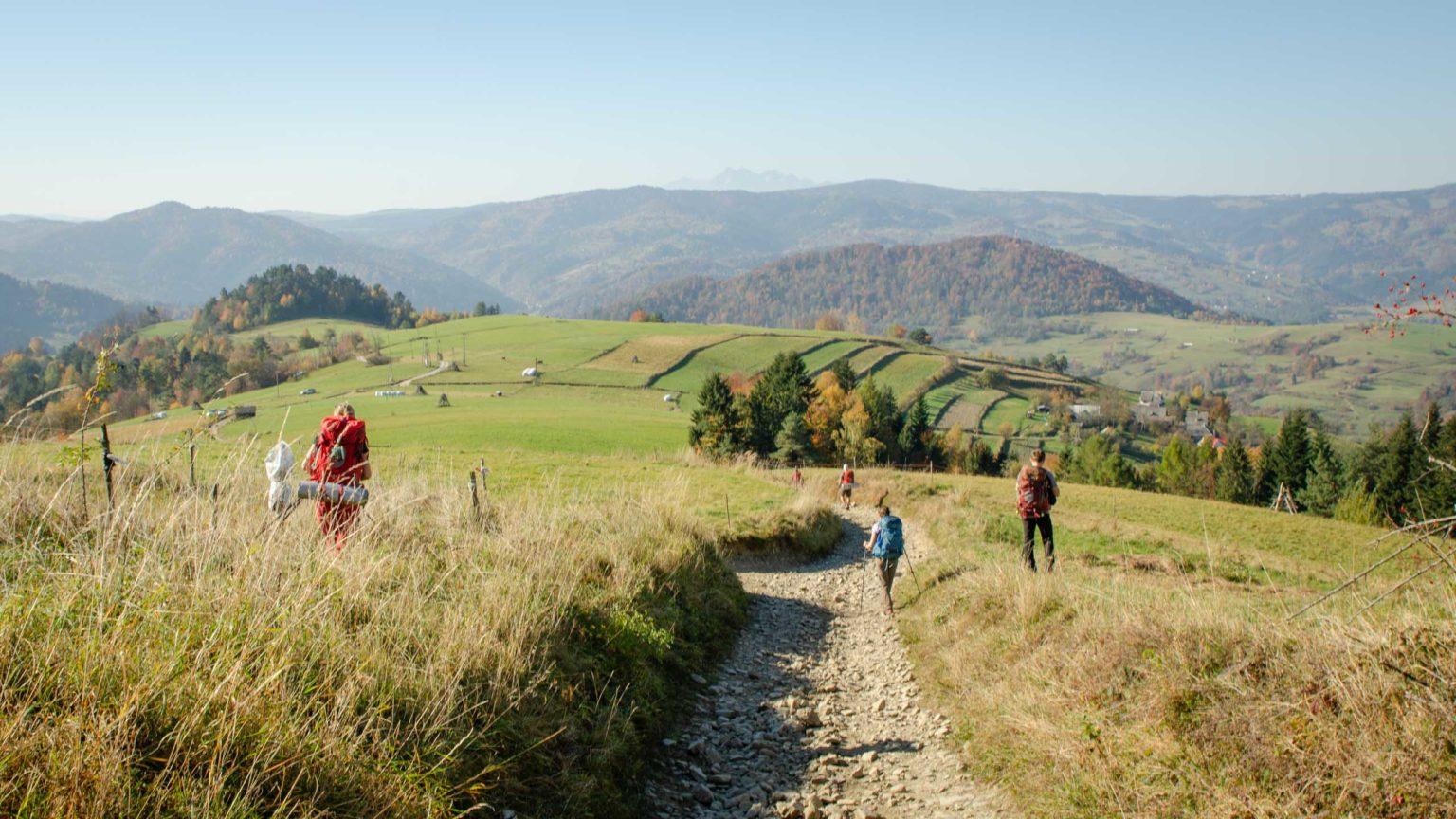 Grupa osób idzie polaną w górach