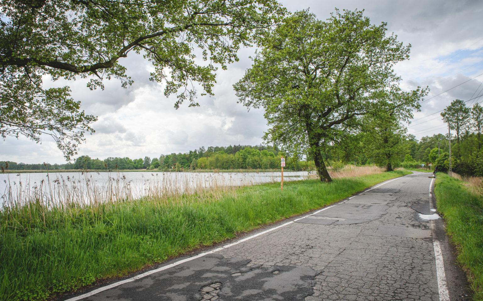 Staw Bies i droga asfaltowa