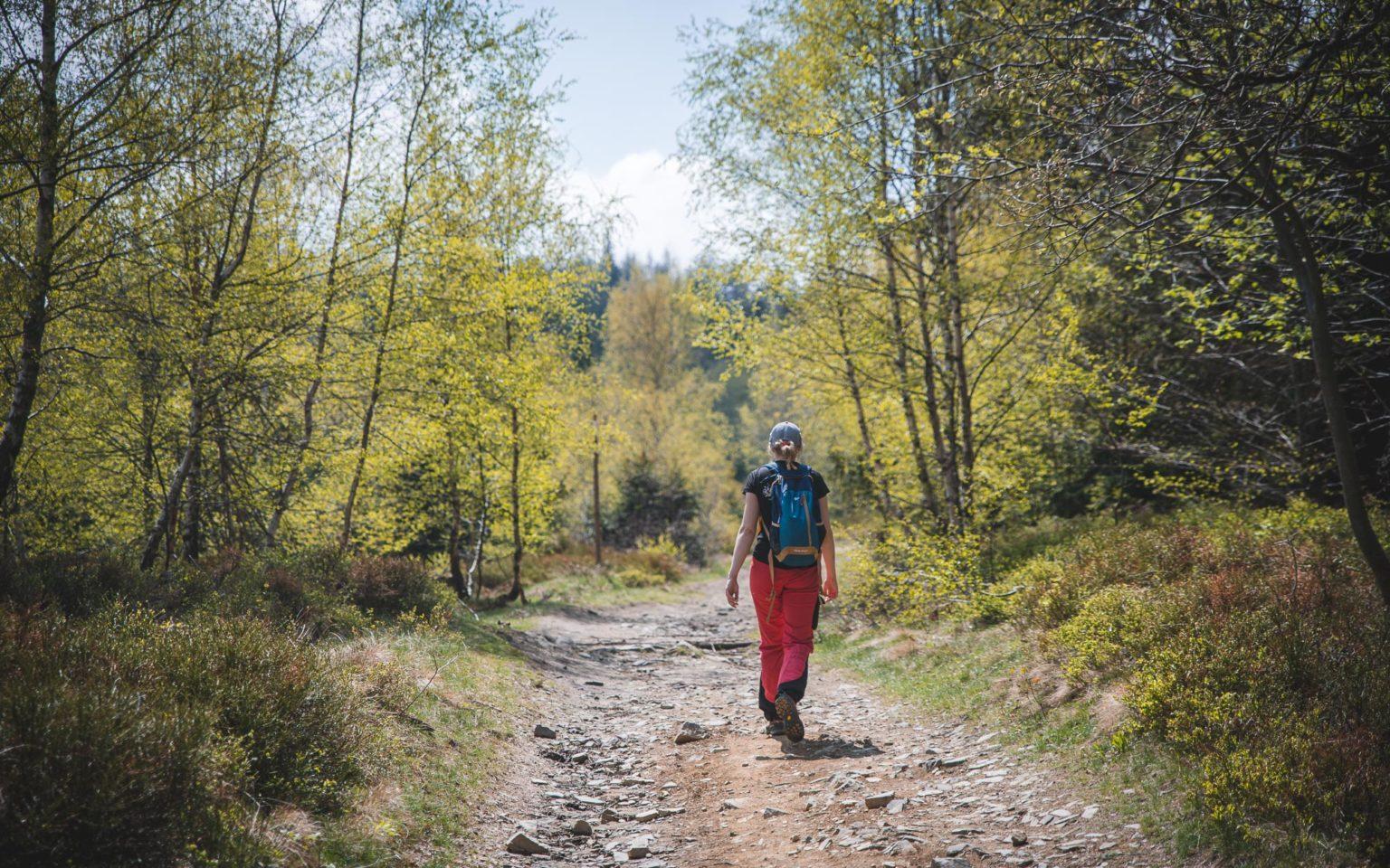 Jak chodzić po górach - kobieta idzie na szlaku