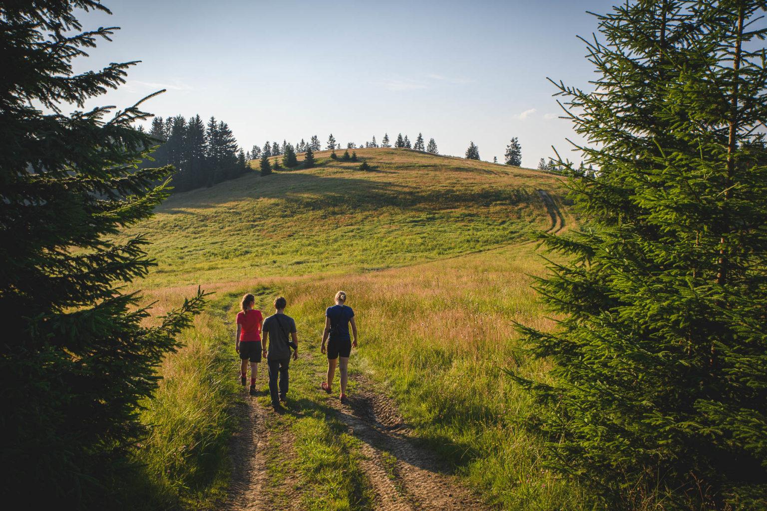 Turyści idą na Surowy Wierch