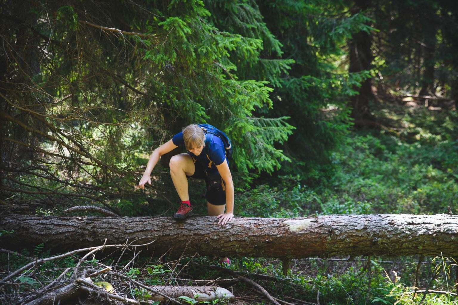 Kobieta przechodzi przez pień drzewa na szlaku na Parač