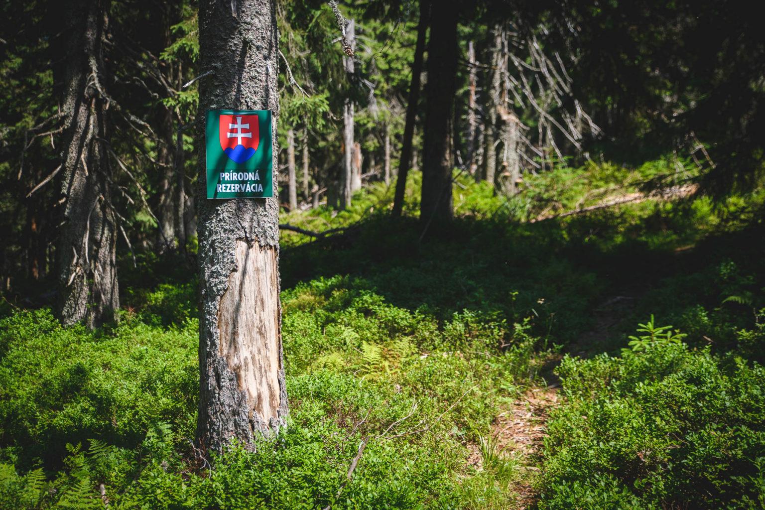 Parač - rezerwat przyrody