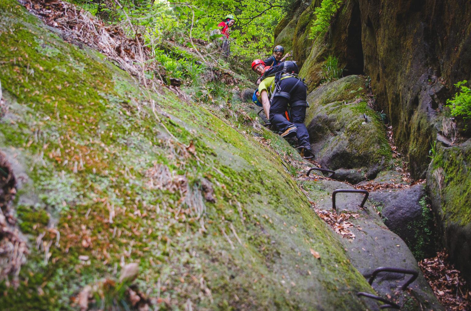 Zejście po klamrach po skale w lesie