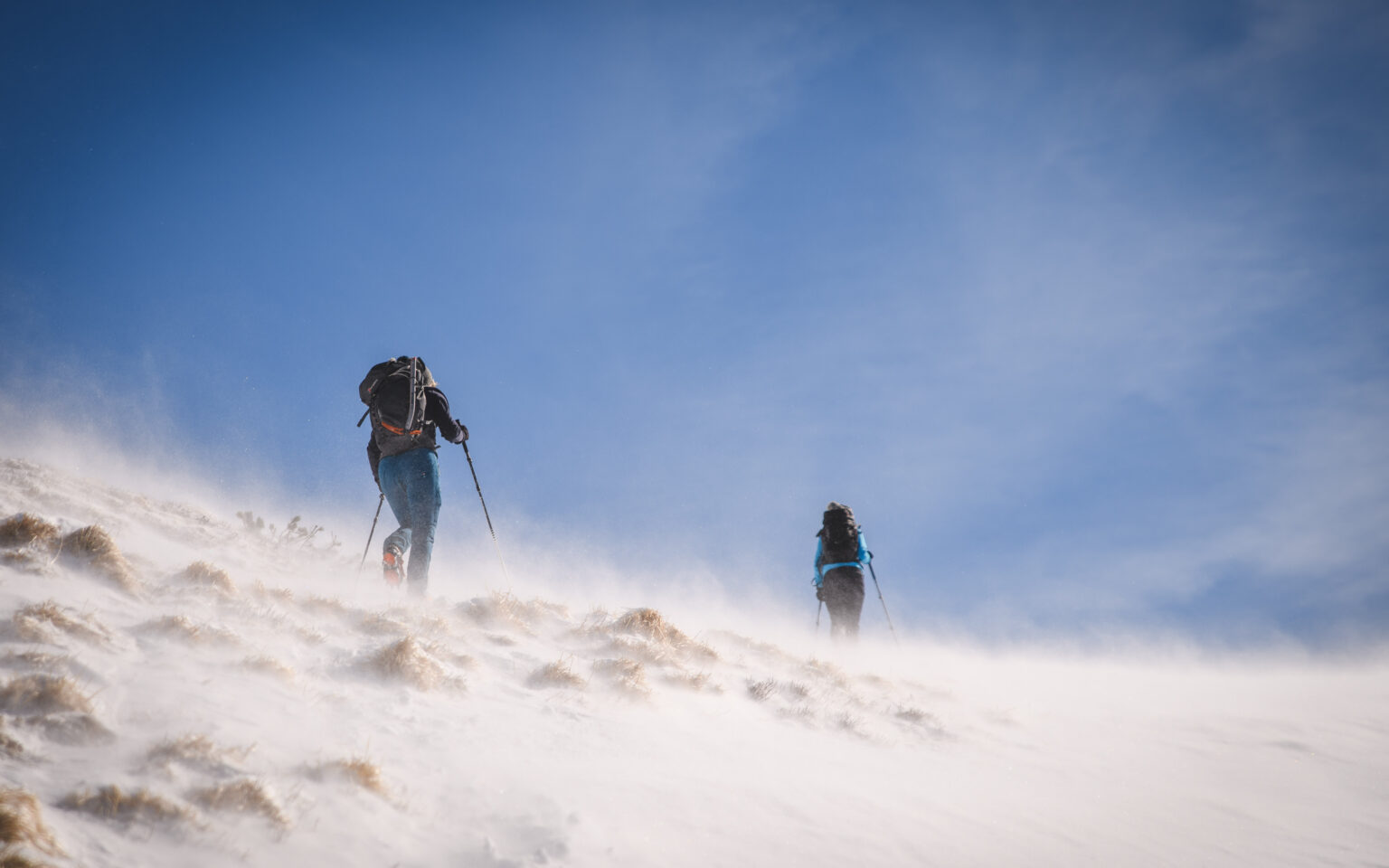 Turystki na szlaku w wietrze - Czerwone Wierchy zimą