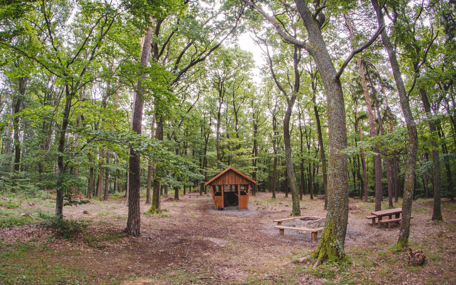 Wiata w lesie - góry na Węgrzech