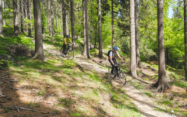 Singletrack Szklarska - chłopaki na rowerach zjeżdżają
