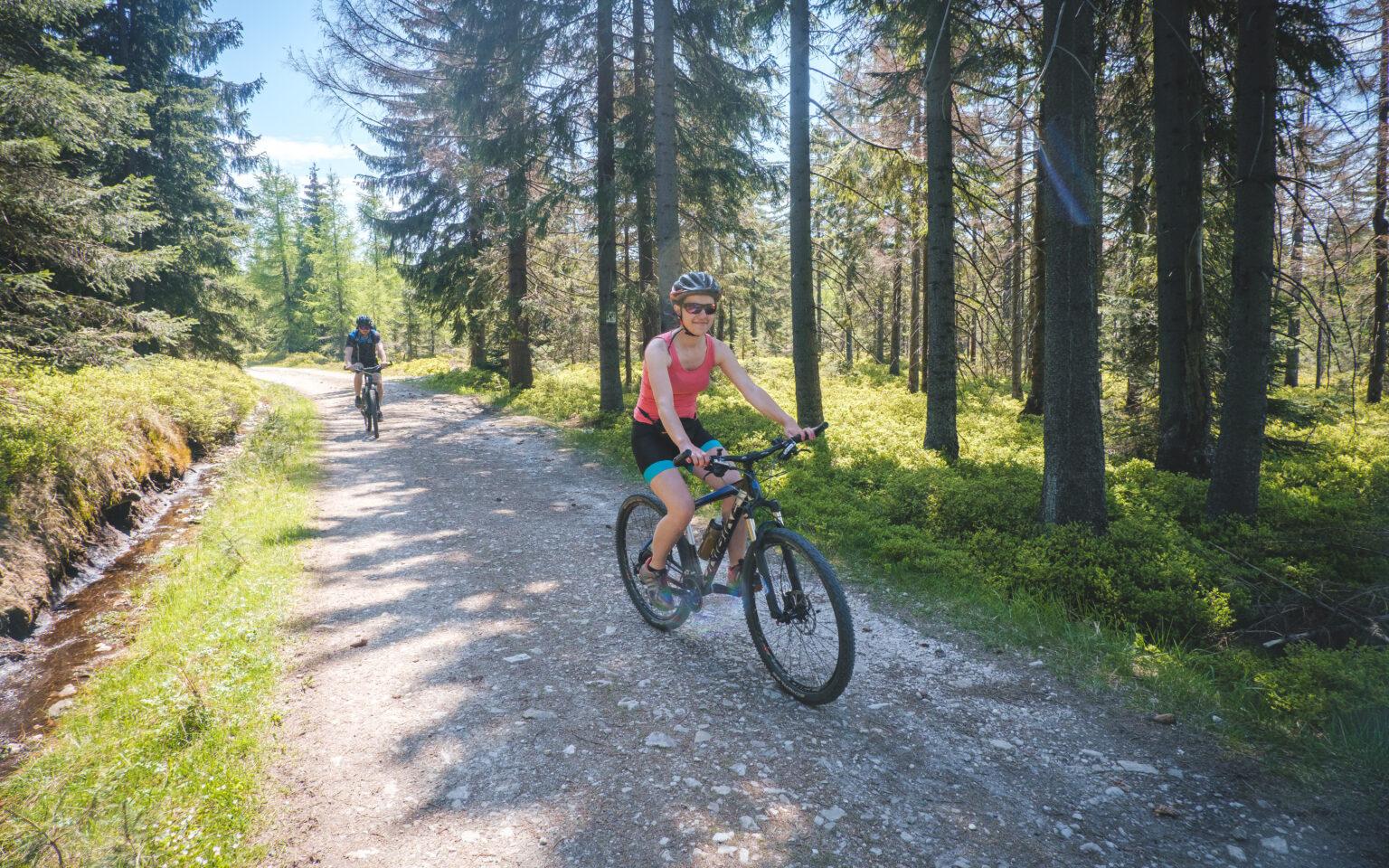 Całka jedzie na rowerze po szlakach w Górach Izerskich